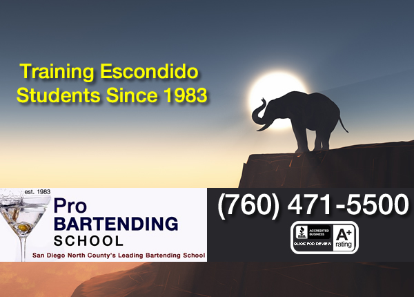 Bartender classes escondido
